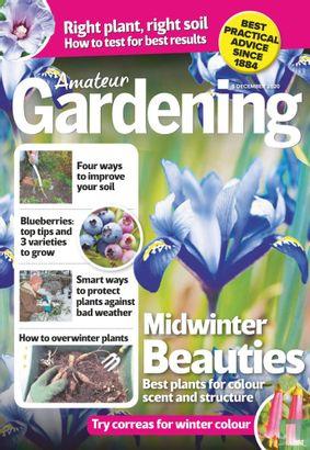 Amateur Gardening 12-05 - Image 1