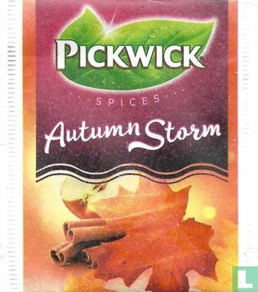 Autumn  Storm   - Image 1