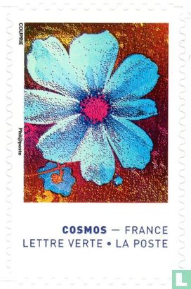 France [FRA] - The colors of the cosmos