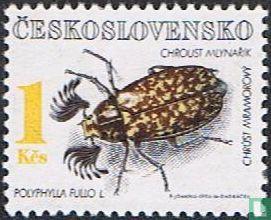 Czechoslovakia - Beetles