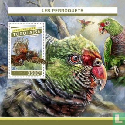 Togo - Perroquets