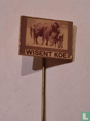 Wisent koe