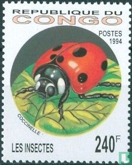Congo-Brazzaville - Insects and spiders