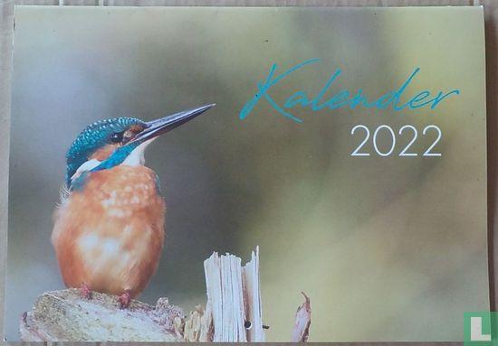Pelicano 2022 - Image 1