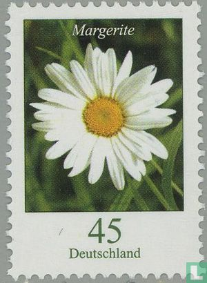 Allemagne [DEU] - Fleurs