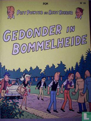 Piet Pienter en Bert Bibber - Gedonder in Bommelheide