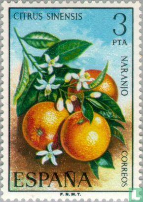 Spanien [ESP] - Früchte