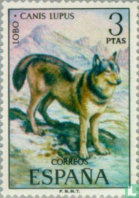 Spain [ESP] - Animals