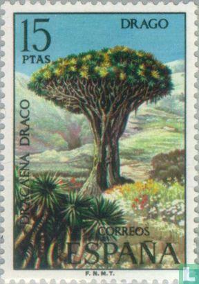 Spanien [ESP] - Flora