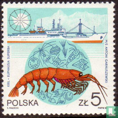 Pologne [POL] - Polir sur Antartica