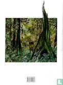 Bois-Maury (Towers of Bois-Maury, The) - Oog van de hemel