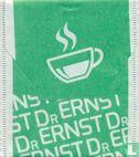 Dr Ernst - Dr Ernst
