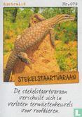 Albert Heijn - Australië - Stekelstaartvaraan