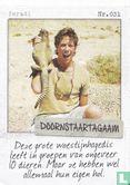 Albert Heijn - Israël - Doornstaartagaam
