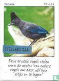 Albert Heijn - Canada - Stellers gaai