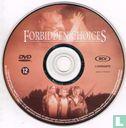 DVD - Forbidden Choices