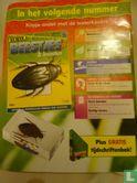Echte beestjes & insecten 26 - Bild 2