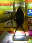 Echte beestjes & insecten 24 - Bild 3