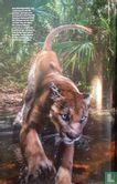 National Geographic [NLD/BEL] 4 - Image 3