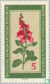 GDR - Plants