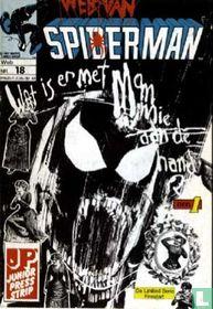 Web van Spiderman 18