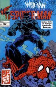 Web van Spiderman 67