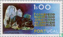 Geology Congress