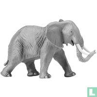 Olifanten dieren catalogus