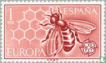 Europa – Honingraat