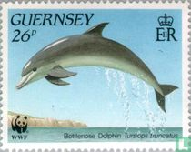 WWF - Leven in de zee bij Guernsey