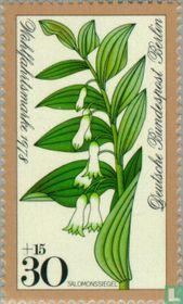 Wald-Blumen