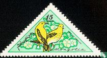 Vogels kopen