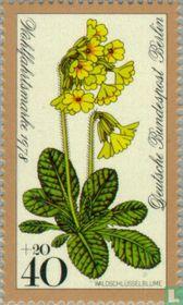 Waldblumen