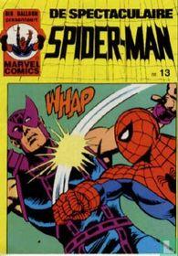 De spectaculaire Spider-Man 13