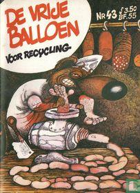 De Vrije Balloen 43