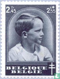 Kroonprins Boudewijn
