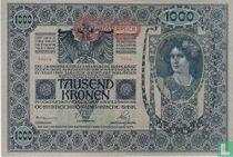 Deutschösterreich 1.000 Kronen ND (1919) P61
