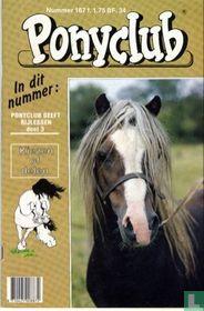 Ponyclub 167
