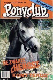 Ponyclub 173