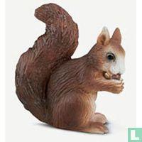 Eekhoorns dieren catalogus