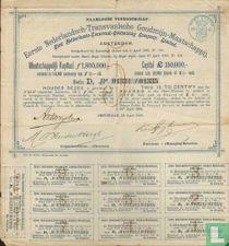 Eerste Nederlandsch-Transvaalsche Goudmijn-Maatschappij, Certificaat van 5 aandelen, elk 12,= Gulden