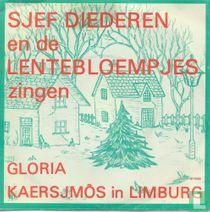Sjef Diederen en de Lentebloempjes zingen Gloria en Kaersjmôs in Limburg