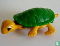 , de schildpad