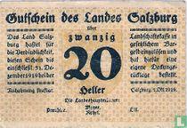 Salzburg 20 Heller 1919