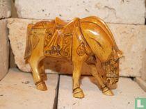 Paard Oxbone
