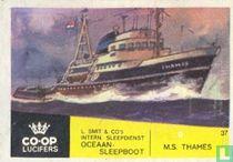 Ms Thames