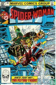 Spider-Woman 40