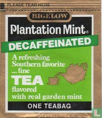 Plantation Mint Decaffeinated