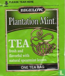 Plantation Mint