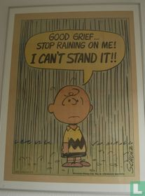 good grief... stop raining on me!, i can't stand it!!
